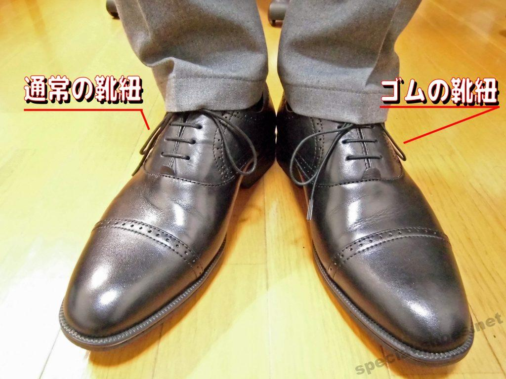 ビジョンクエスト 伸びる靴ひもの見た目