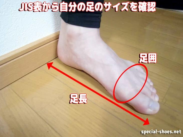 JIS表から自分の足のサイズを確認